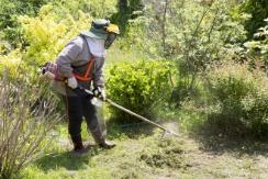 草刈り・お庭のお手入れ
